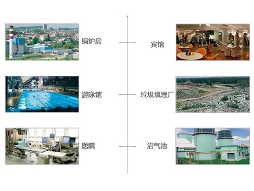 Tedom projects for landfield gas utilisation TEDOM 公司的垃圾填埋场沼气工程